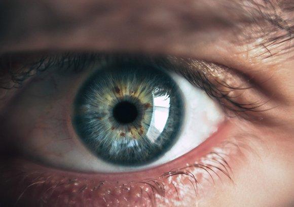 adult-blue-blue-eyes